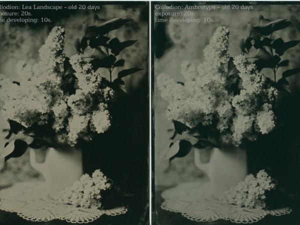 Kolodiový test Lea Landscape verzus Ambrotype